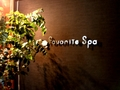 Favorite Spa